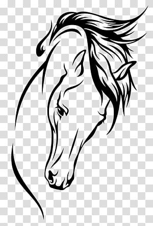 Chess Knight Chess Piece Horse Black Png Image Silhouette Horse Head Clipart Transparent Png Is Free Transparen Horse Silhouette Knight Chess Horse Head