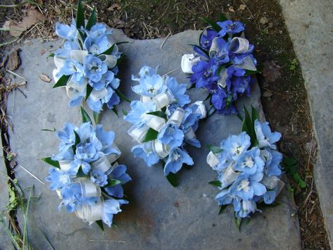 hydrangea wrist corsage | wrist corsages made of blue delphinium others wore pin on corsages ...