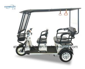 3 Wheel Electric Tricycle Bikes For Adults In Philippine On Made