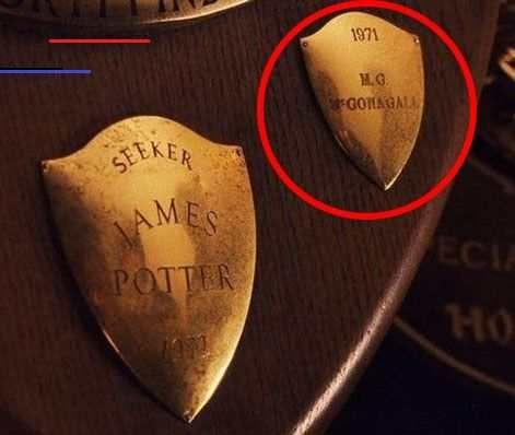 In Der Stein Der Weisen Zeigt Die Plakette Des Quidditch Teams Der Gryffindors In Dem Harrys Vater Und Professor Mcgonagall Gespielt Haben Parenting Film