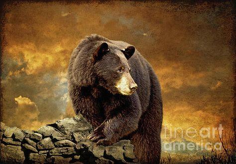Stump Jumper by Bruce Miller 28x22 Wildlife Black Bears Poster BEAR ART PRINT