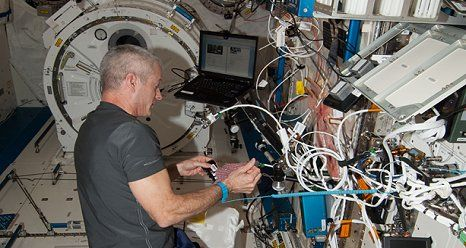 Running the Race to Cure Cancer From Space