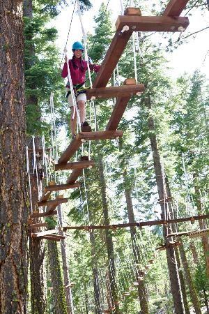 Tahoe City Treetop Adventure Park Offset Bridge Fuzzy Bunny Course Lake Tahoe Vacation Tahoe City Lake Tahoe Trip
