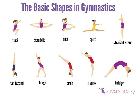 The Basic Shapes in Gymnastics