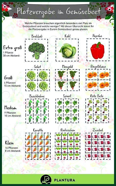 Erhohte Beete Fruchtfolge Und Schadlingsbekampfungspflanzen Beete Erhohte Fruchtfolge Schadlingsb Hochbeet Pflanzen Hochbeet Bepflanzen Garten Hochbeet