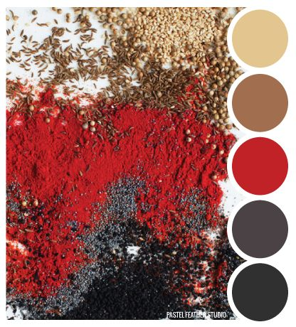 Pastel Feather Studio SPICE TONES Color Palette More Find - Black and red color combo