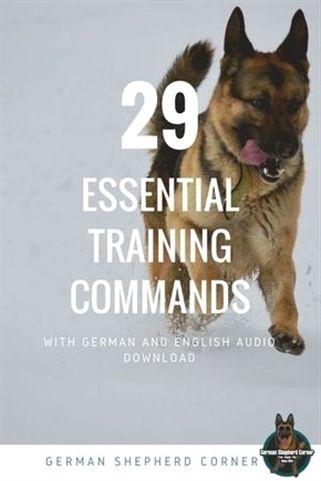 Garmin Dog Training Collar Dog Training Usb Dog Training