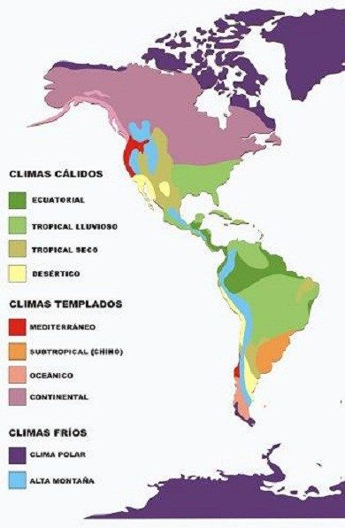 Pin En Mundo Zootopia