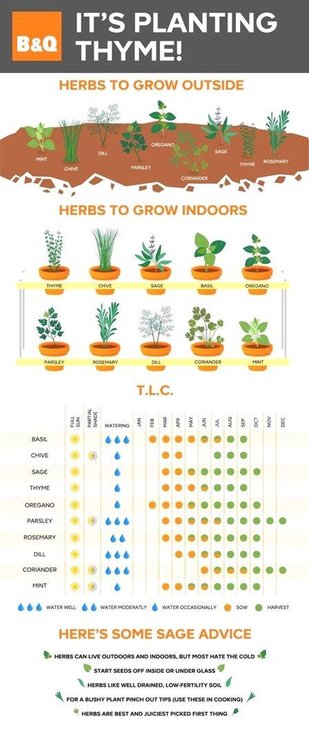 Fall Vegetable Gardening North Texas Lunar Gardening Calendar Uk January Landscape Garden Design Software Planting Herbs Indoor Herb Garden Herbs Indoors