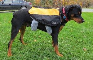 Sheepskin Strap Pad Comforts Dog Harness Hiking Packs Leash Or
