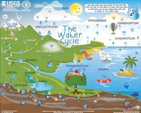 14 best the water cycle images on pinterest water cycle we love this interactive water cycle chart from usgs you can select the right level ccuart Choice Image