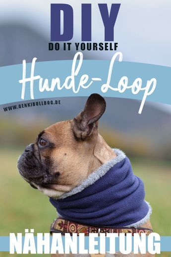Anleitung Loop Schal Fur Hunde Selbst Nahen Hunde Hunde Sachen Hund Diy