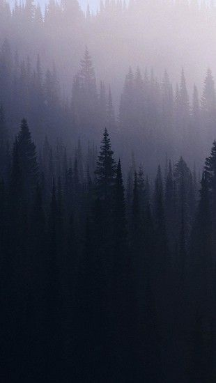 Iphone Wood Wallpapers Hd From Uploaded By User Forest Tattoos Mists Android Wallpaper