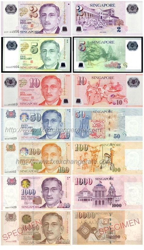 Singapore Currency Singapore Dollar Singapore Dollar Money Notes Currency Design