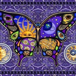 Sun Moon Butterfly psychedelic Celestial Tapestry Wall hanging