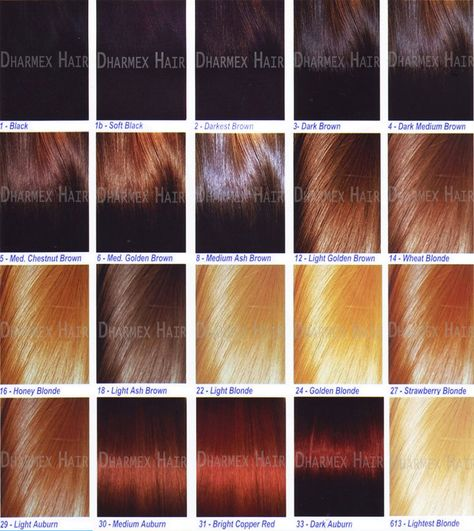 Hair Color Chart For Black Women Hairstyle Trend Hairstyle Trends