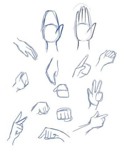 30 Ideas Drawing Anime Nose Anatomy Drawing In 2020 Drawing Anime Hands Drawings Drawing Tips