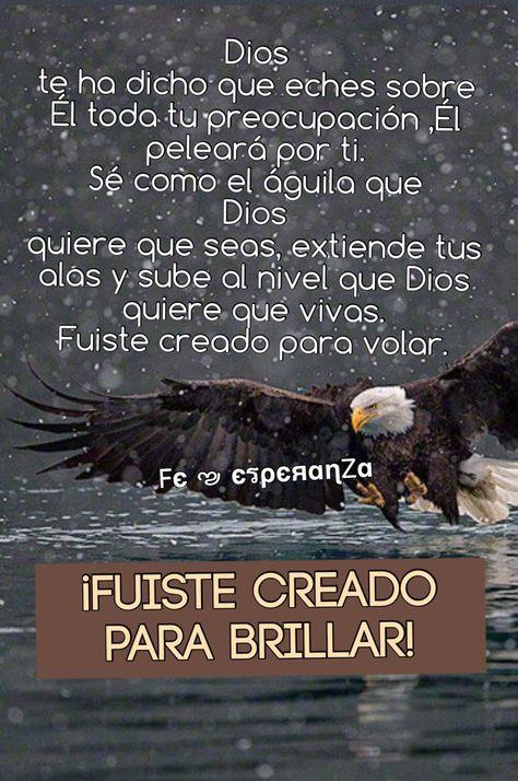 Fuiste creado para brillar!!! A volar Dios ha dicho!!!!!