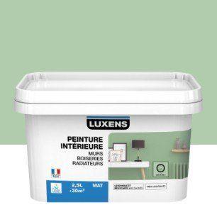 Peinture Mur Boiserie Radiateur Toutes Pieces Multisupports Luxens Cactus 5 Peinture Mur Parement Mural Boiserie