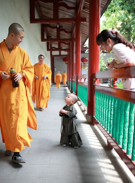 """Cute """"Little Monk"""" in SE China Goes Viral Online"""