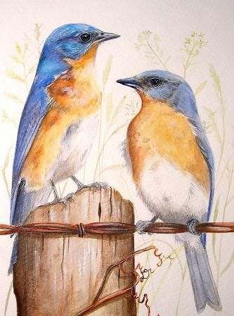 Easy Bird Paintings On Canvas For Beginners Google Search