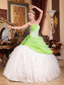 Lime Green And White Wedding Dresses | Wedding Gallery