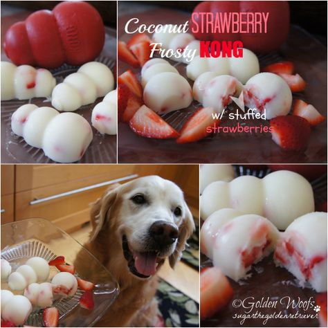 DIY Coconut Banana Strawberry Frosty KONG (they used a Kong mold, you can use anything. ice trays, or whatever works for ya!)