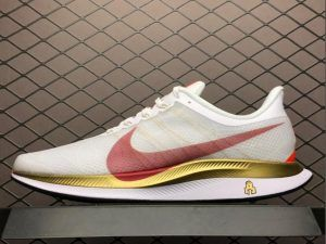 soborno dentro acidez  2019 Nike Air Zoom Pegasus 35 Turbo