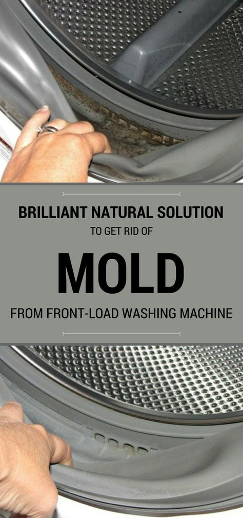 Brilliant Natural Solution To Get Rid Of Mold From Front-Load Washing Machine - 101CleaningTips.net