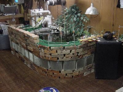 stock tank for turtles. stock tank - outdoor ponds and other enclosures turtle times forums   garden crafts pinterest tank, aquariums for turtles b