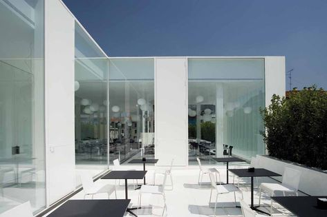 19 Best Dolce   Gabbana images   Shop windows, Display cases, Window  displays f6775e3c59