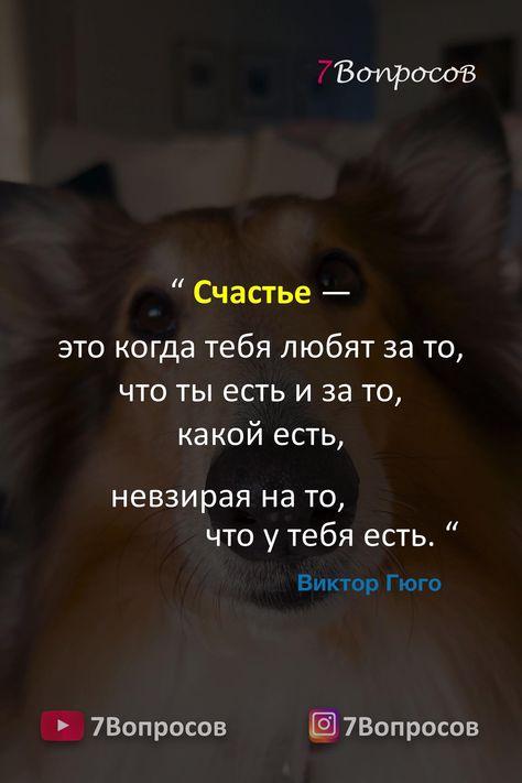 """"""" Счастье — это когда тебя любят за то, что ты есть и за то, какой есть, невзирая на то, что у тебя есть. """" © Виктор Гюго. Музыка: www.purple-planet.com #цитаты #афоризмы #мудрыеслова #духовныйрост"""