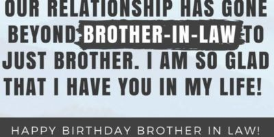 Funny Brother In Law Quotes Happy Birthday Quotes
