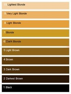 Hair Color Levels Charts Our Foolproof Guide To Choosing Tones