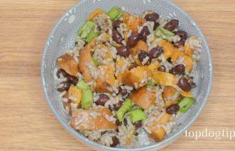13 Balanced Homemade Dog Food Recipes Balanced Homemade Dog Food