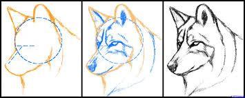 Resultado De Imagen Para Bocetos De Lobos Faciles A Lapiz Paso A Paso Lobos Para Dibujar Como Dibujar Un Perro Como Dibujar Un Lobo