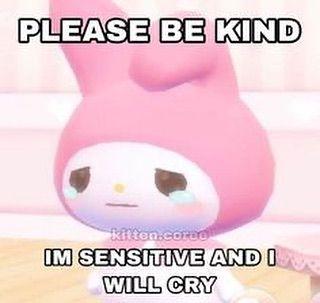 "SoftiiSanrioo on Instagram: ""Please be nice 🥺 I'm very sensitive . . .  ✨#sanrio #sanriomemes #cute #aesthetic #raccoon … in 2020 | Baby memes, Cute  memes, Cute love memes"