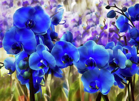 Blue Orchid Garden Wall Art