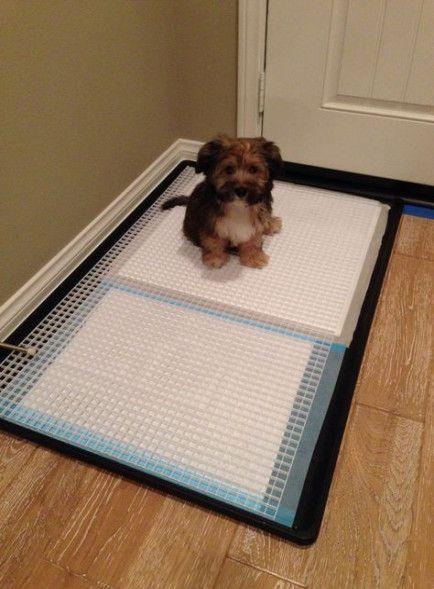 Diy Dog Potty Indoor Faces 26 Ideas, Indoor Dog Bathroom Solutions