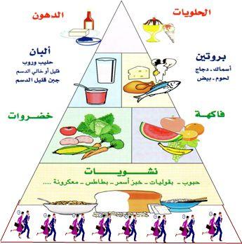 الهرم الغذائي School Board Decoration Health And Nutrition Community Helpers Preschool