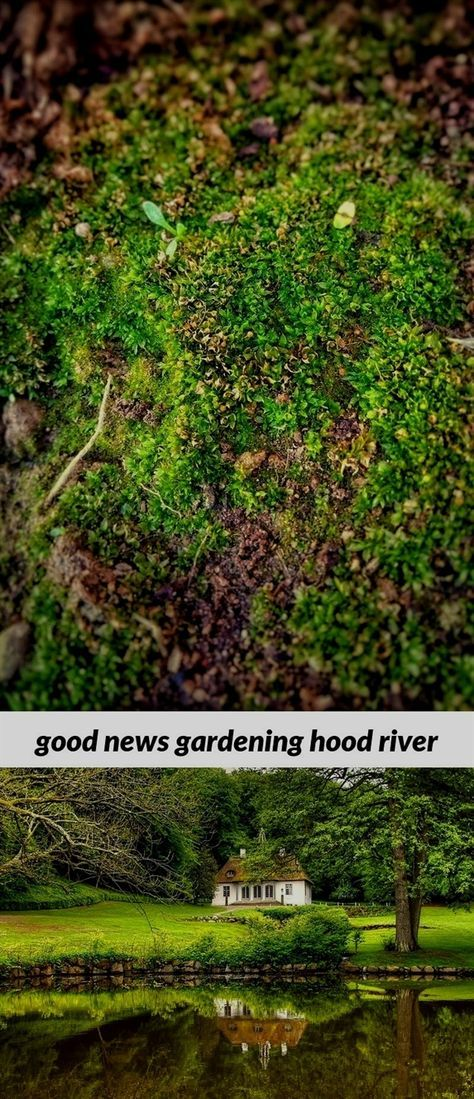 e4506048680c2f32e179bd3fe9bcbdf5 - Good News Gardening Hood River Or