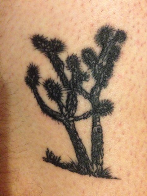 Joshua tree tattoo to mark my holiday in California. Done by Liquid tattoo in Yucca Valley