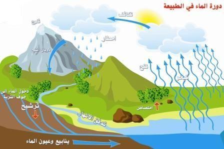 بعد ان شهدت دورة المياه في الطبيعة عليك حل ورقة العمل اق Thinglink Scene Image Story