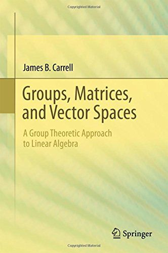 Groups Matrices And Vector Spaces PDF | Mathematics | Logic math