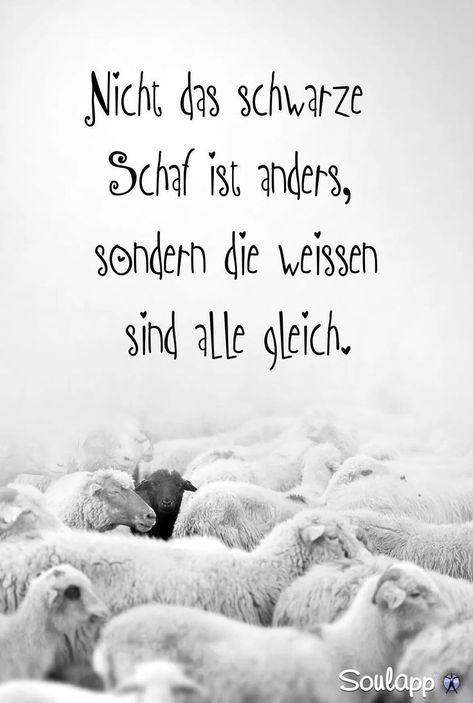 Quote- saying # quote #spring- Zitat- Spruch  #zitat #spruch  Quote saying  #Quo... - #Quo #Quote #Spring #Spruch #zitat