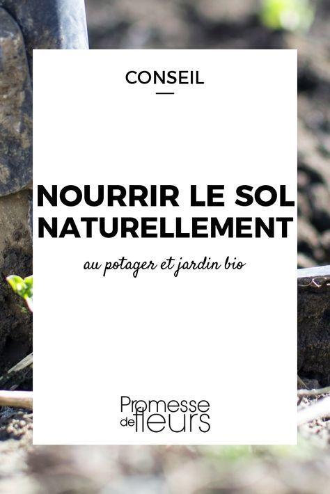 Nourrir Le Sol Naturellement Potager Facile Potager Bio Potager Permaculture
