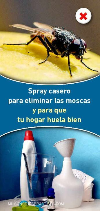 Spray Casero Para Eliminar Las Moscas Y Para Que Tu Hogar Huela Bien Repelente Casero Moscas Lleva Suavizante Bicarbonato Cleaning Hacks Cleaning Mosquito