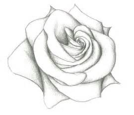 Best 25 Easy Rose Drawing Ideas On Pinterest Easy To Pencil Sketches Easy Flower Sketches Pencil Drawings Easy