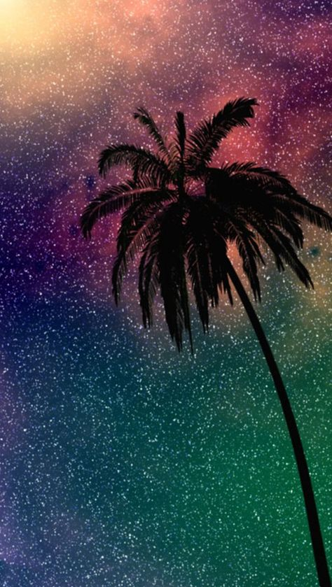 Palm tree iPhone background