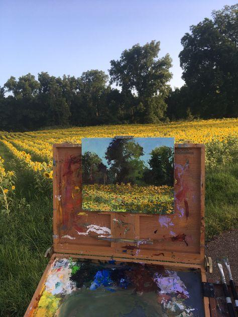 Sunflower fields - Artist Carol Roark